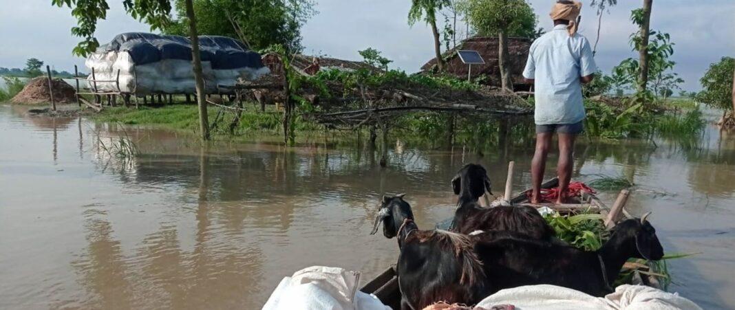 Flood havoc fails to wake up Bihar administration